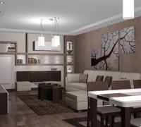 Shelves in living room
